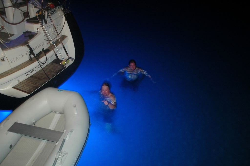 These are the two nuts, swimming with the sharks at night.
