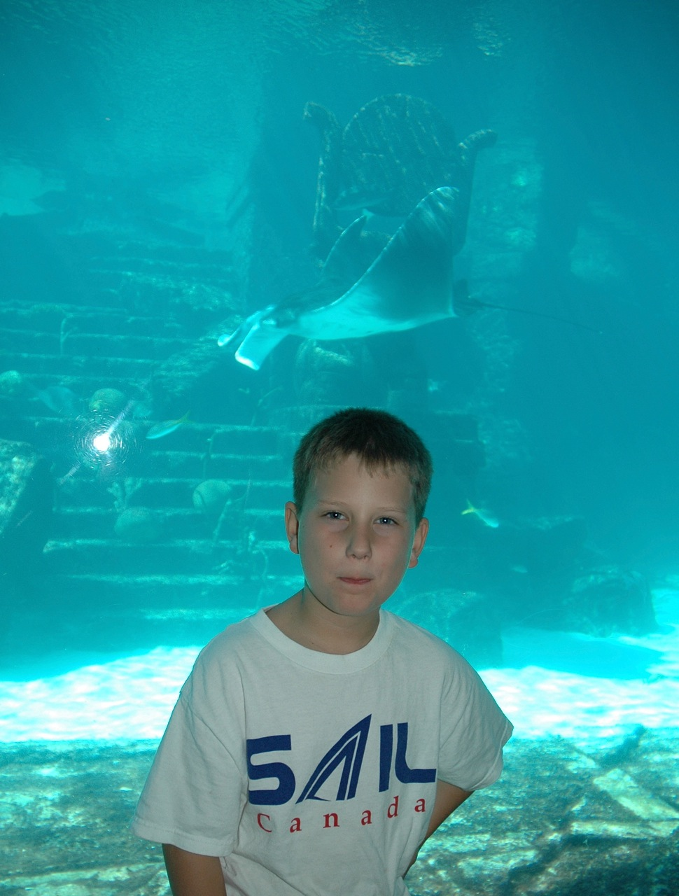 Me and the Manta Rays.