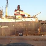 Container Ship Algo Steel