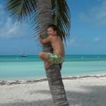 Cubb Cay Palms