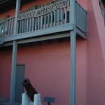Bimini Museum