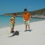 Boys with Iguana